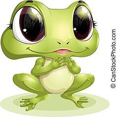 hermoso, rana, con, ojos grandes