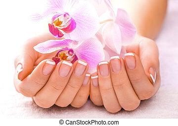 hermoso, rosa, blanco, manicura, orquídea