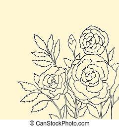 hermoso, rosas