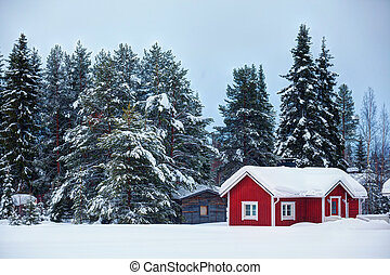 hermoso, súper, finlandés, paisaje