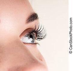 hermoso, salón, ojo de la mujer, eyelashes., belleza, pestaña, extension., joven, largo, concepto