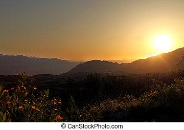 hermoso, salida del sol, en las montañas