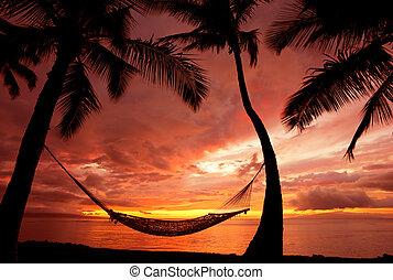 hermoso, silueta, vacaciones, árboles, hamaca, palma, ocaso
