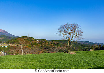 hermoso, tierras labrantío