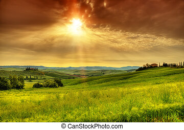 hermoso, toscana, paisaje, salida del sol
