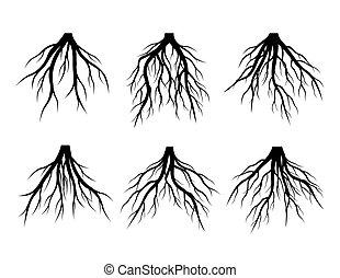 hermoso, vector, illustration., árbol., negro, raíces