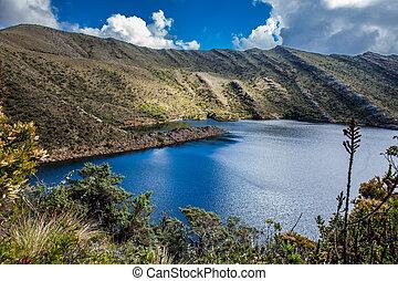 hermoso, vegetación, departamento, paisaje, actuación, cundinamarca, colombiano, montañas, tipo, paramo, andino