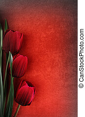hermoso, vendimia, flores, plano de fondo, tulipán
