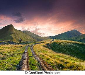 hermoso, verano, camino, paisaje, montañas