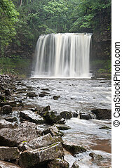 hermoso, verano, cascada, bosque, corriente