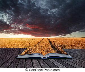 hermoso, verano, concepto, tempestuoso, imagen, cielo,...