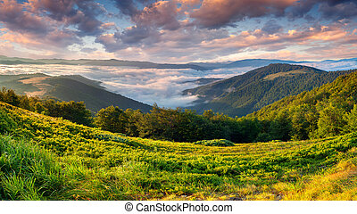 hermoso, verano, paisaje, en, el, montañas., salida del sol