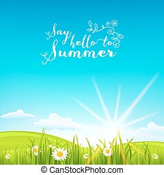 hermoso, verano, plano de fondo