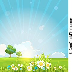 hermoso, verano, salida del sol