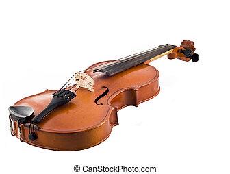 hermoso, violín, aislado