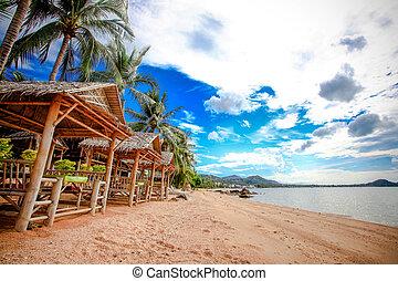 hermoso, vista de mar, withh, palmas, árbol, en, koh samui