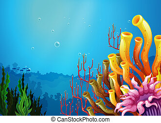 hermoso, vista, mar, debajo