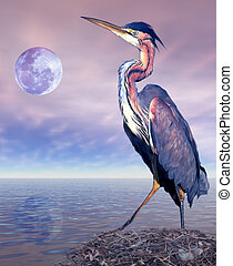 Heron - A heron standing on its nest with a moonlit backdrop