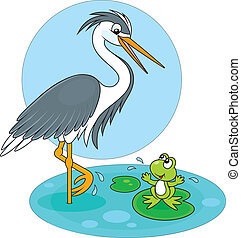 Heron and frog - Egret standing on one leg and green frog...