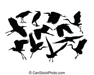 Stork Bird Silhouettes