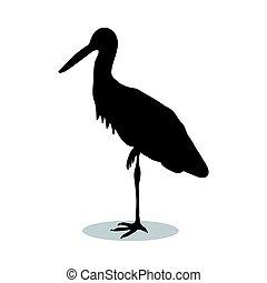 Heron bird  black silhouette animal