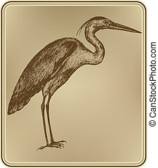 Heron bird, hand-drawing. Vector illustration.
