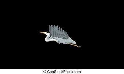 Heron flies in the sky alpha mate