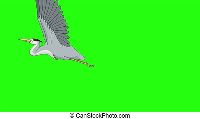 Heron flies up into the sky. Handmade animated looped footage isolated on green screen