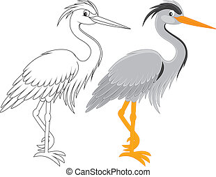 Grey heron, color and black and white outline vector illustrations