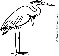 Heron - vector illustration of a heron standing