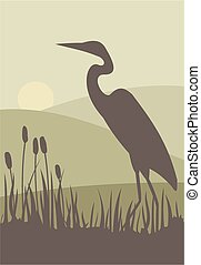 Heron silhouette - A heron stalks prey in a reed bed.