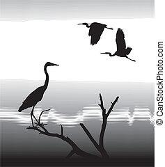Herons - vector illustration silhouettes Herons on lake...