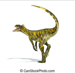 Herrerasaurus dinosaur, photorealistic representation, scientifically correct. Dynamic view,  with open mouth. On white background and drop shadow. Clipping path included.