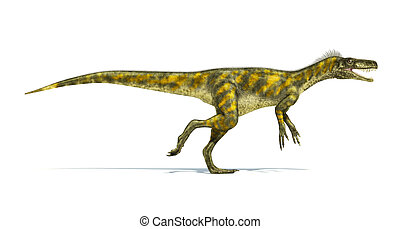 Herrerasaurus dinosaur, photorealistic representation, scientifically correct. Side view,  with open mouth. On white background and drop shadow. Clipping path included.