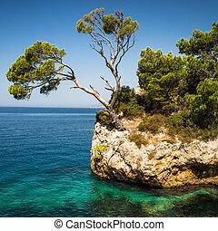 herrlich, (makarska, riviera, brela), kroatien, seacoast
