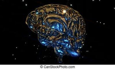 hersenen, animatie, menselijk