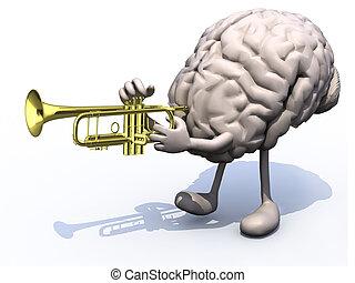 hersenen, armen, playng, menselijk, benen, trompet