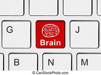hersenen, computer sleutel, toetsenbord