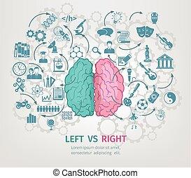hersenen, concept, menselijk