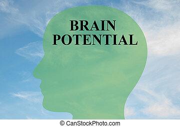 hersenen, concept, potentieel