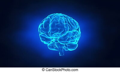 hersenen, concept, reizen