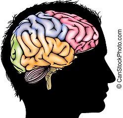 hersenen, concept, silhouette