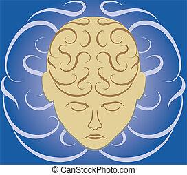 hersenen, doolhof