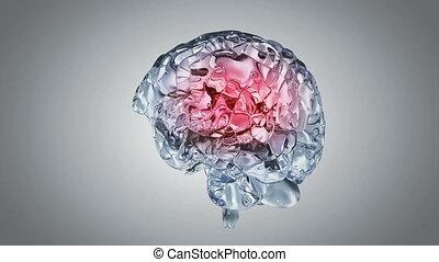 hersenen, glazig