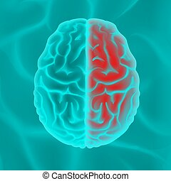 hersenen, gloeiend, menselijk