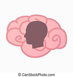 hersenen, hoofd, mannelijke , vrijstaand