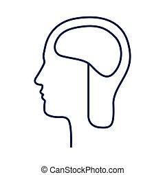 hersenen, hoofd, silhouette, bovenkant