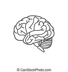 hersenen, lijn, menselijk, pictogram