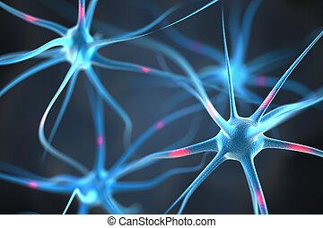 hersenen, neurons