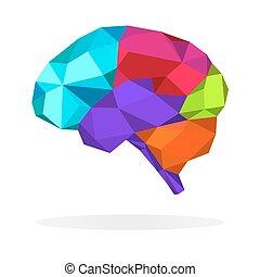 hersenen, ontwerp, veelhoek, kleurrijke